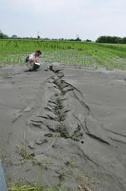 Photo of Sopralluoghi dei geologi anche nella Provincia di Rovigo