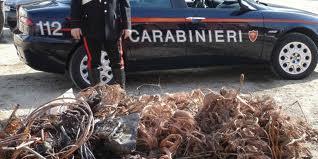 Photo of Furto di rame. I Carabinieri  arrestano 7 romeni in due giorni operazioni