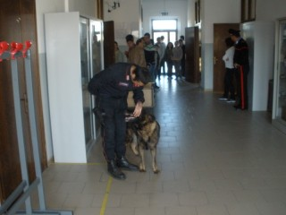 Photo of Droga davanti alla scuola. 18enne arrestato dai Carabinieri