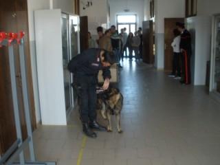 Carabinieri antidroga