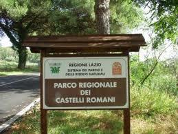 Photo of Tagliano e rubano 2500 kg di legname dal Parco Regionale