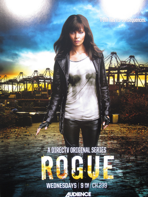 Rogue poster