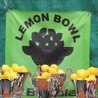 Lemon Bowl Babolat