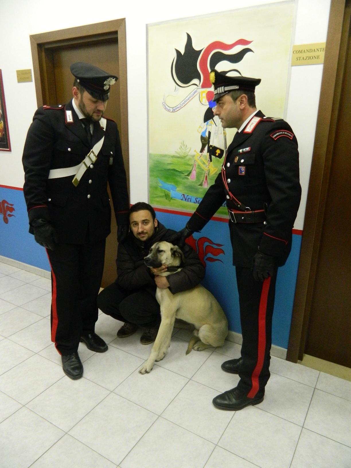 Photo of Rapisce un cane e chiede il riscatto al proprietario. Poi gli aizza contro il suo molossoide. Morso il comandante dei Carabinieri, che erano intervenuti