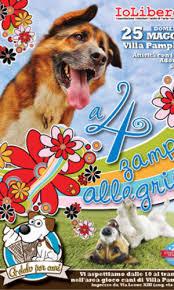 Photo of «A quattro zampe in allegria», il party dedicato ai cani