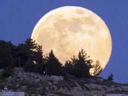 Photo of La notte di San Lorenzo regala una pioggia di Perseidi e la super Luna