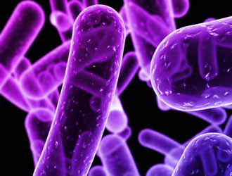 Photo of I microbi, ultimi sopravvissuti del Pianeta Terra