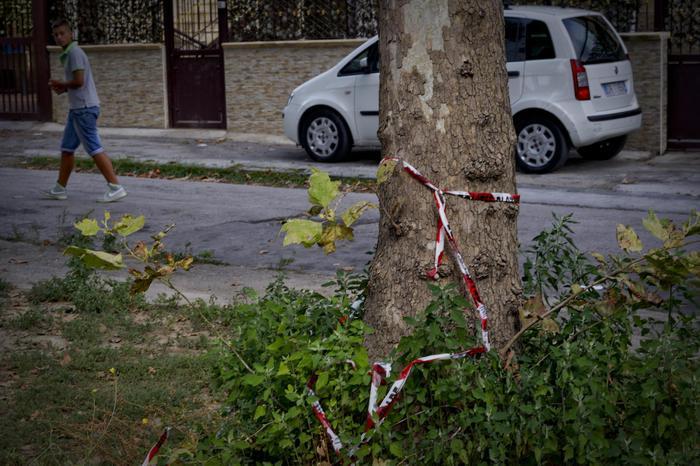 Photo of Non si fermano all'alt. Per un colpo accidentale, muore il 17enne conducente dello scooter, su cui viaggiavano anche due pregiudicati