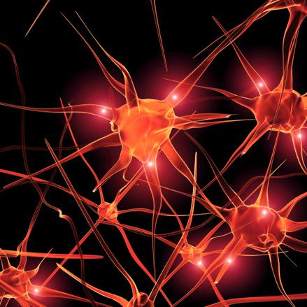 Photo of Stress cronico e labilità della memoria. Colpa di un enzima