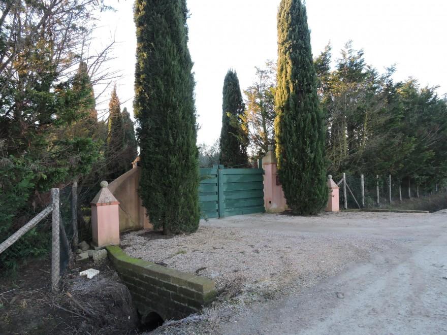 Photo of Flash – Mentre Pino Daniele non è stato ancora 'sepolto', gli sciacalli rubano nella sua villa in Maremma