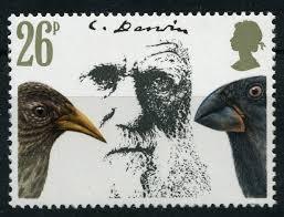 "Photo of Scoperte alle Galàpagos tre nuove specie di ""fringuelli di Darwin"""