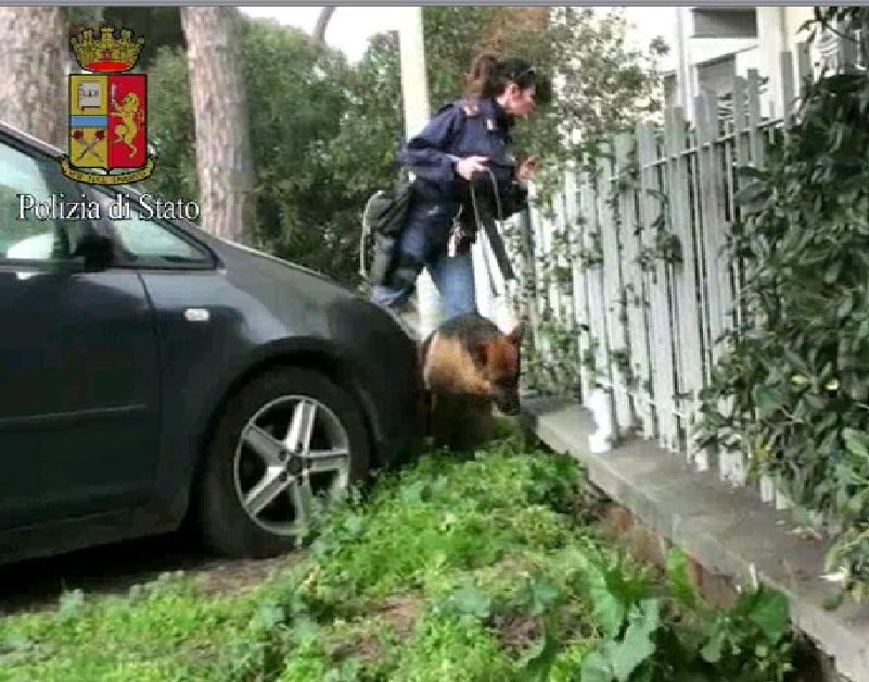 Photo of Era un terreno lungo la strada il nascondiglio della droga. Recuperati 2,2 kg di cocaina. Arrestato un albanese – VIDEO