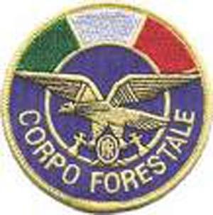Photo of Corpo Forestale: Dati alla mano ecco i veri conti della riorganizzazione
