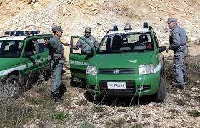 Photo of La Camera ha approvato l'assorbimento della  Forestale in un'unica Forza di Polizia