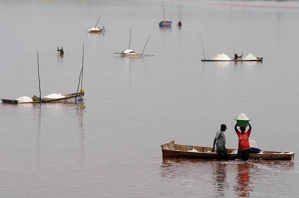 Photo of Ambiente – Allarme Lago Ciad, in 50 anni ridotto a un decimo estensione