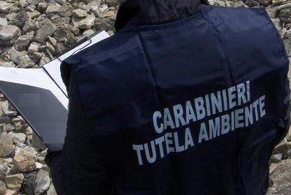 Photo of Arrestato l'ex presidente Autorità Portuale di Fiumicino, Gaeta e Civitavecchia