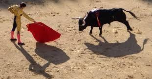 Photo of Il toro incantatore