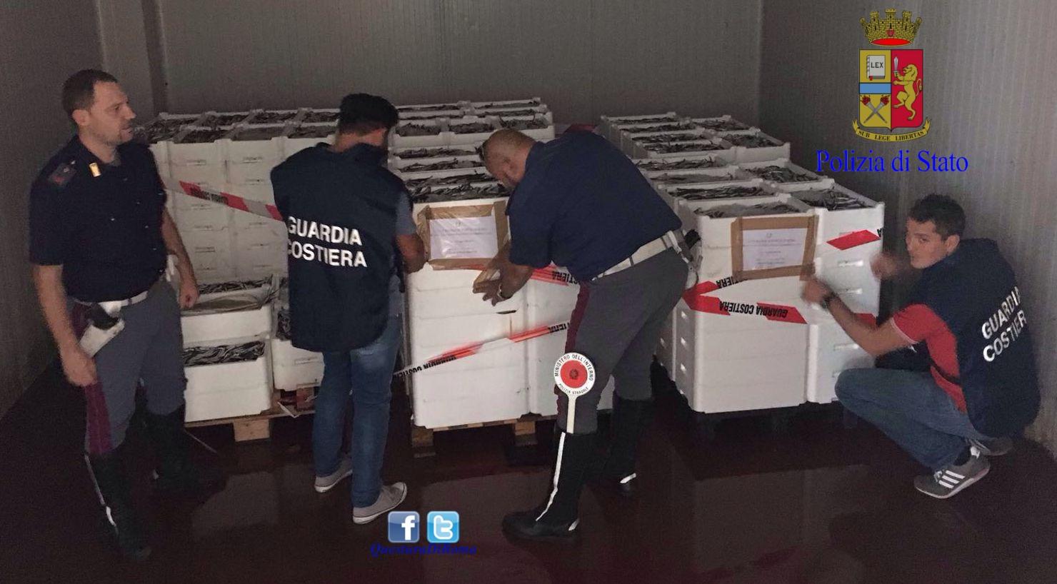 Photo of Roma. Sequestrato oltre 2 tonnellate di pesce destinato ai mercati del sud