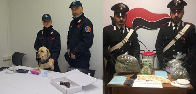 Photo of Lotta al traffico di  stupefacenti e al possesso di armi nei Comuni della provincia romana. 10  gli arrestati