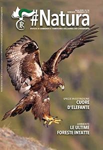 Photo of #Natura: Presentata nella sua nuova veste grafica dai Carabinieri Forestali – AMPIA GALLERIA FOTOGRAFICA