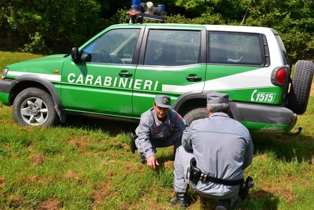 Photo of Funghi si, ma in sicurezza e tutela dell'ambiente con i consigli dei Carabinieri Forestale
