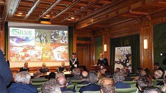 "Photo of Con ""Silvae.it"", i Carabinieri trasferiscono online le norme sulla Tutela dell'Ambiente – AMPIA GALLERIA FOTOGRAFICA"