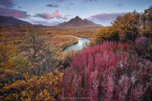 (Foto: Andrea Pozzi - Territori dello Yukon - Canada)