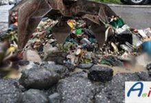 Roma-buche-rifiuti-logo