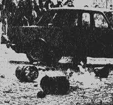 Photo of Terrorismo ideologico e mafioso…solo in Italia..
