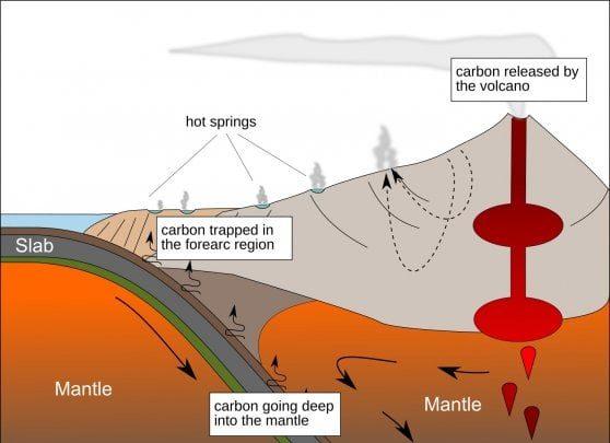 scienze - microorganismi -geologia -clima (foto web)