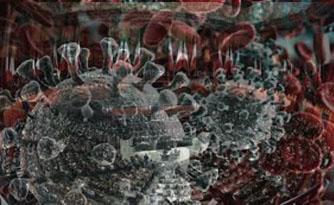pasquinaldo corona_virus-parlamento