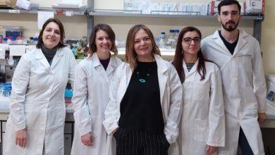 Photo of L'impegno del Cnr nella risposta all'emergenza Coronavirus – Covid-19