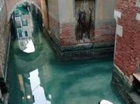 Photo of La trasparenza delle acque di Venezia durante il lockdown per il Covid-19
