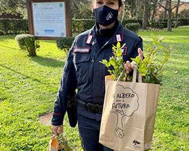 Photo of Carabinieri della Biodiversità. Un albero per il futuro, con piantine fornite gratuitamente