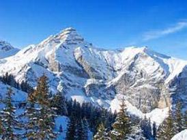 Photo of Clima e ambiente – Neve e vegetazione modulano il riscaldamento climatico