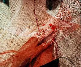 Tomasino - sogni disfatti (foto Foto di Marina TOMASI)