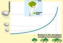 deforestazione amazzonia - pioggia